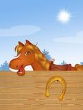 Cavallo divertente nell'azienda agricola del Th Fotografie Stock Libere da Diritti