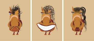 Cavallo divertente tre Fotografia Stock Libera da Diritti
