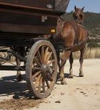 Cavallo e carrello Fotografia Stock Libera da Diritti
