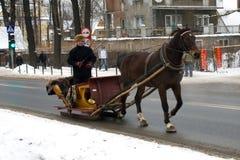 Cavallo e carrello fotografie stock