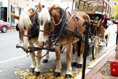 Cavallo e carrello Immagine Stock Libera da Diritti