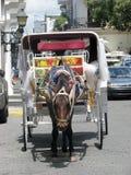 Cavallo e carrello Fotografie Stock Libere da Diritti