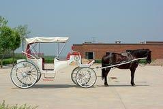 Cavallo e carrello Immagini Stock