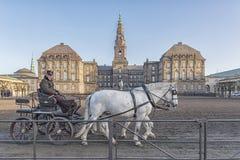 Cavallo e carretto del palazzo di Copenhaghen Christianborg Fotografia Stock