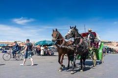 Cavallo e carretto (Marrkech) Immagine Stock Libera da Diritti