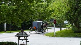 Cavallo e carrozzino di Amish che scendono la strada fotografia stock