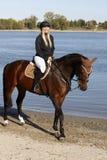 Cavallo e cavaliere alla riva del fiume Fotografia Stock