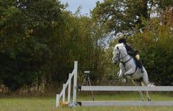 Cavallo e cavaliere che saltano una transenna fotografie stock libere da diritti