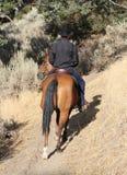 Cavallo e cowboy che guidano su una traccia. Fotografia Stock