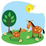 Cavallo e foal illustrazione di stock