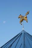 Cavallo e luna dorati Fotografie Stock