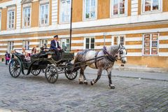 Cavallo e trasporto Fotografia Stock Libera da Diritti