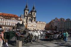 Cavallo e trasporto a Praga Fotografie Stock