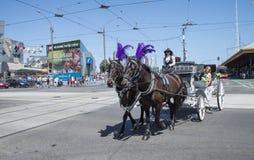 Cavallo e trasporto, via di Swantson, Melbourne, Australia Immagine Stock