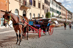 Cavallo e vettura che attendono alla piazza Navona Fotografia Stock Libera da Diritti
