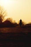 Cavallo ed uomo Fotografia Stock