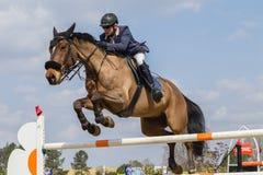 Cavallo equestre Rider Jumping Fotografia Stock