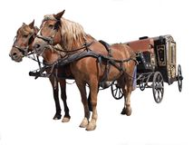 Cavallo il carrello Immagini Stock