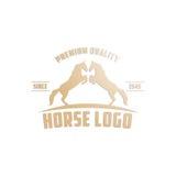 Cavallo Logo Template Fotografia Stock Libera da Diritti