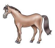 Cavallo marrone sveglio Fotografia Stock