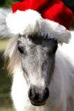 Cavallo miniatura di natale Fotografia Stock Libera da Diritti