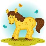 Cavallo nel prato Fotografia Stock