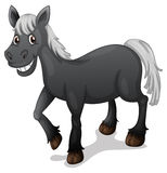 Cavallo nero illustrazione vettoriale
