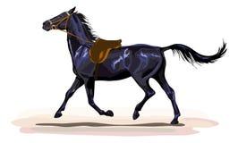 Cavallo nero che trotta con la sella Immagini Stock Libere da Diritti