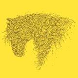 Cavallo organico Fotografia Stock