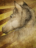 Cavallo in pascolo royalty illustrazione gratis