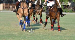 Cavallo Polo Player Use un maglio Fotografie Stock Libere da Diritti