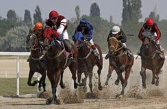Cavallo racing_2 Fotografia Stock Libera da Diritti