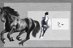 Cavallo selvaggio che corre liberamente Fotografia Stock Libera da Diritti