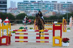 Cavallo stupefacente di Showjumping Fotografie Stock Libere da Diritti