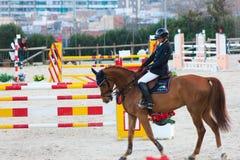 Cavallo stupefacente di Showjumping e un cavaliere Fotografie Stock Libere da Diritti