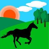 Cavallo sul prato verde nella Rolling Hills sotto il sole royalty illustrazione gratis
