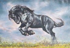 Cavallo sulla prateria Immagine Stock