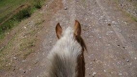Cavallo sulla strada non asfaltata della montagna con Rider Point della vista archivi video