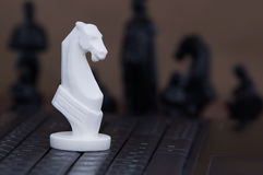 Cavallo sulla tastiera immagini stock libere da diritti