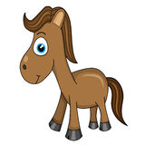 Cavallo sveglio Fotografia Stock