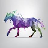 Cavallo variopinto dalle gocce.  illustrazione Fotografie Stock
