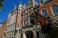 Cavallo a vecchio Québec Fotografia Stock