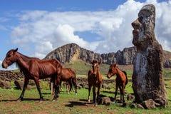 Cavallo vicino alle statue su Isla de Pascua Rapa Fotografia Stock Libera da Diritti