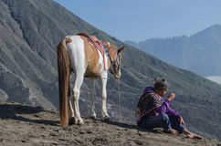 Cavallo vicino a Volcano Bromo, Java, Indonesia Fotografie Stock Libere da Diritti