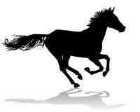 Cavalo 2 Fotografia de Stock Royalty Free