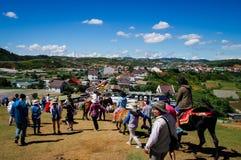 Cavalo alugado no monte com céu azul Imagens de Stock