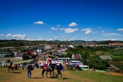 Cavalo alugado no monte com céu azul Fotos de Stock