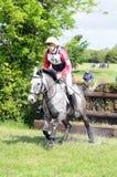 Cavalo após o salto Imagem de Stock
