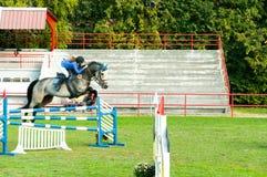 Cavalo branco bonito e salto do passeio do jóquei da jovem mulher sobre o gancho no esporte equestre imagens de stock royalty free