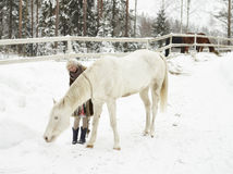 Cavalo branco e mulher imagens de stock royalty free